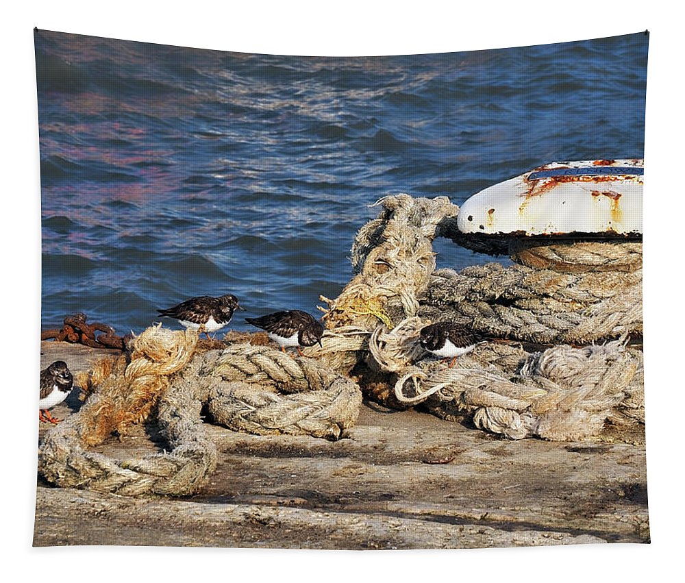 Turnstones Tapestry featuring the photograph Turnstones At The Harbour by Susie Peek