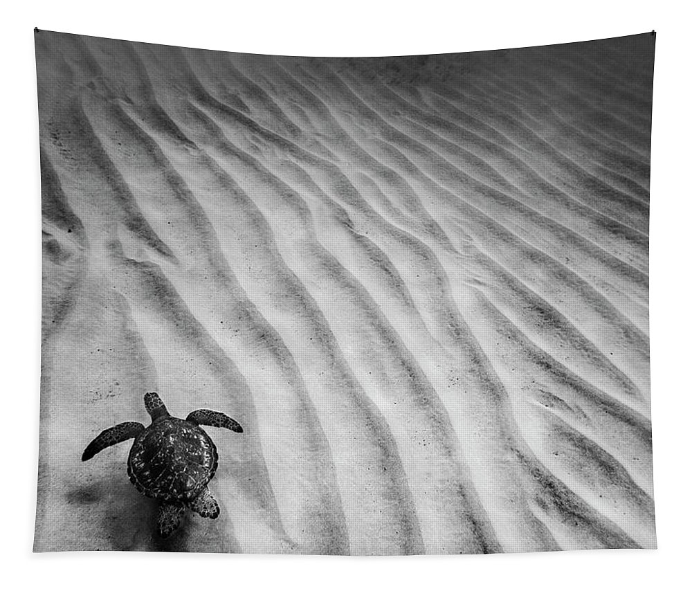 Black And White Tapestry featuring the photograph Turtle Ridge by Sean Davey