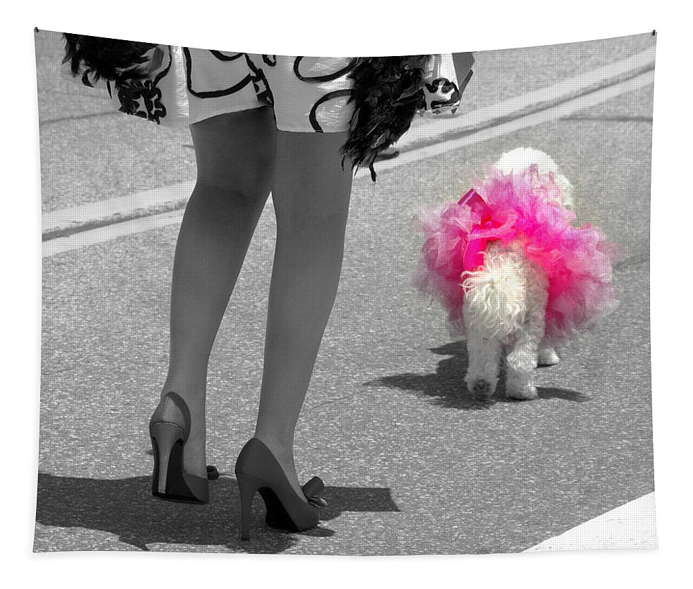 Dog Tapestry featuring the photograph Tutu Cute by Fiona Kennard