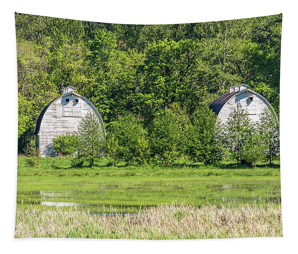 Agriculture Tapestry featuring the photograph Twin Barns In Spring by Marv Vandehey