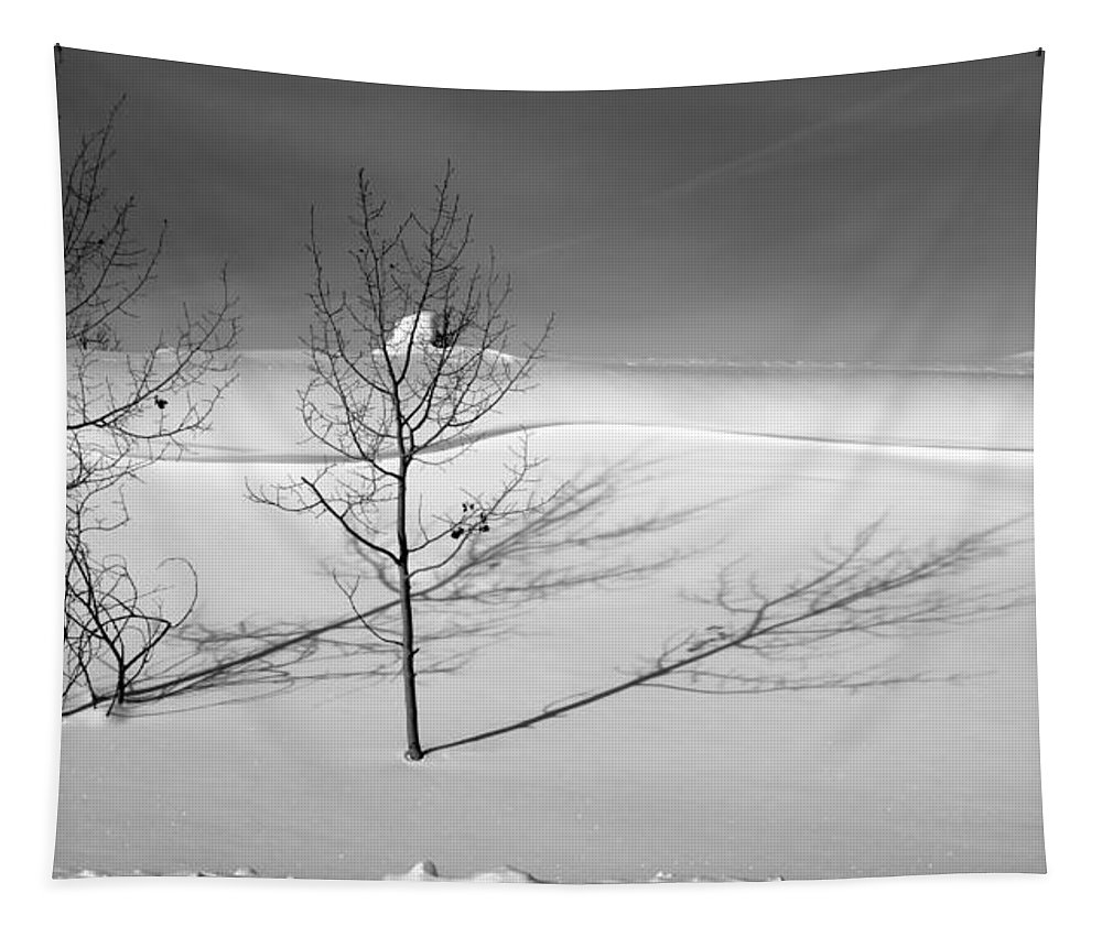 Nature Tapestry featuring the photograph Twins by Skip Hunt