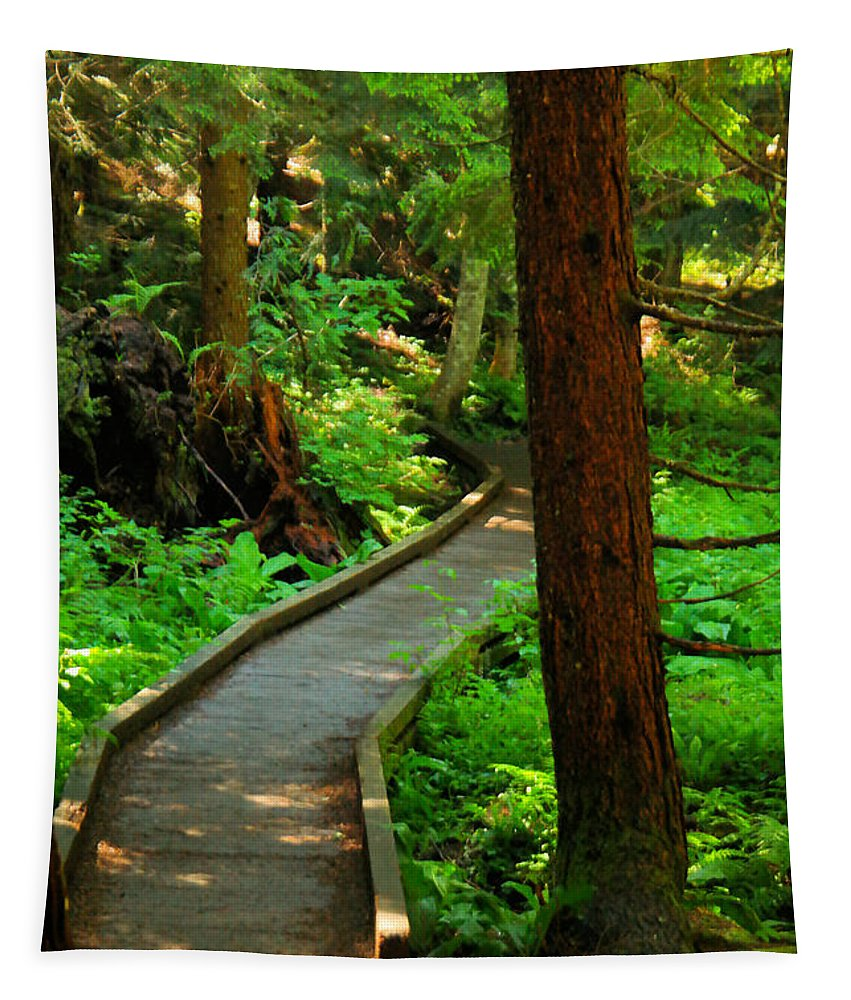 Forest Tapestry featuring the photograph Twisting Path Through The Woods by Jeff Swan