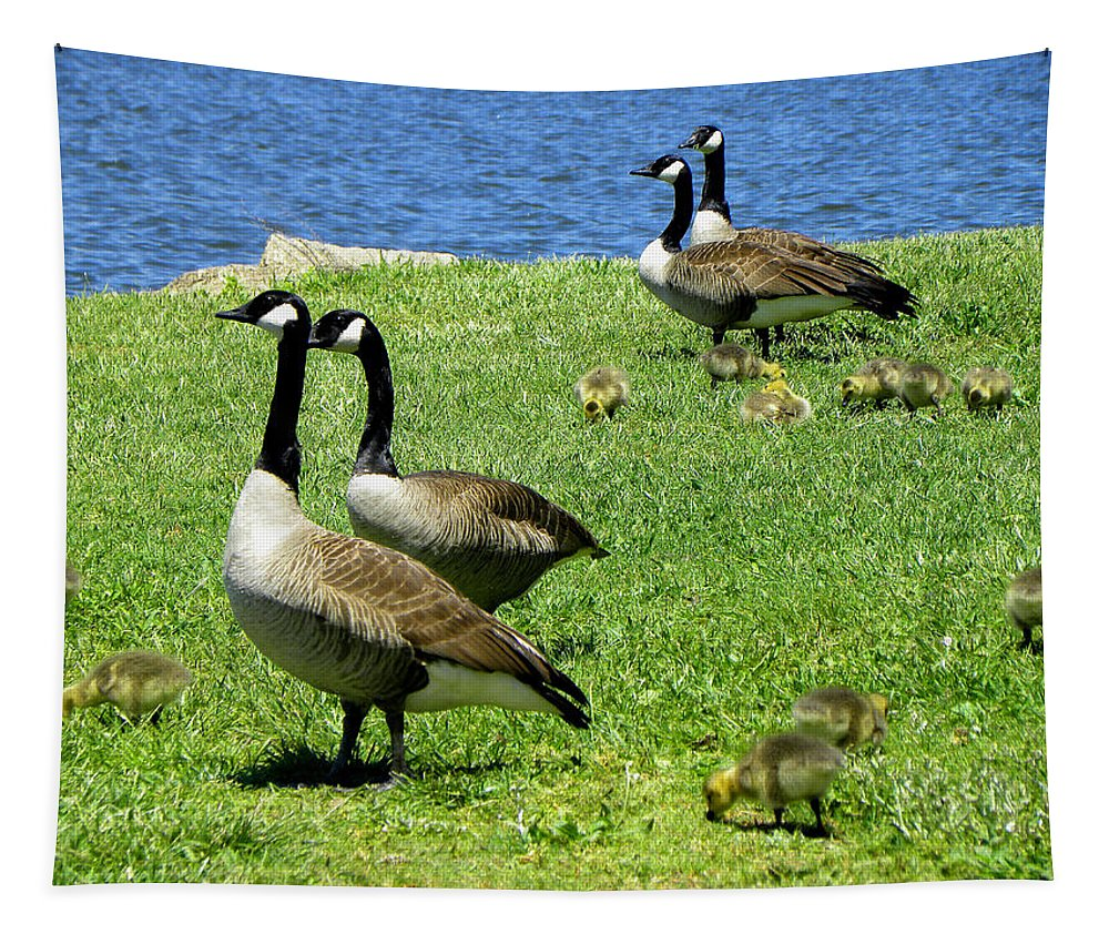 Geese Tapestry featuring the photograph Two By Two by Sandi OReilly