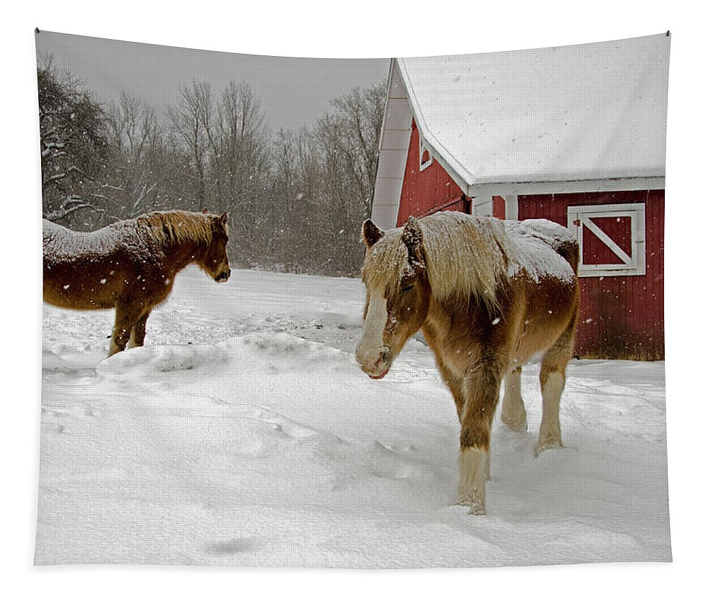 Horses Tapestry featuring the photograph Two Horses In Winter by Eleanor Bortnick