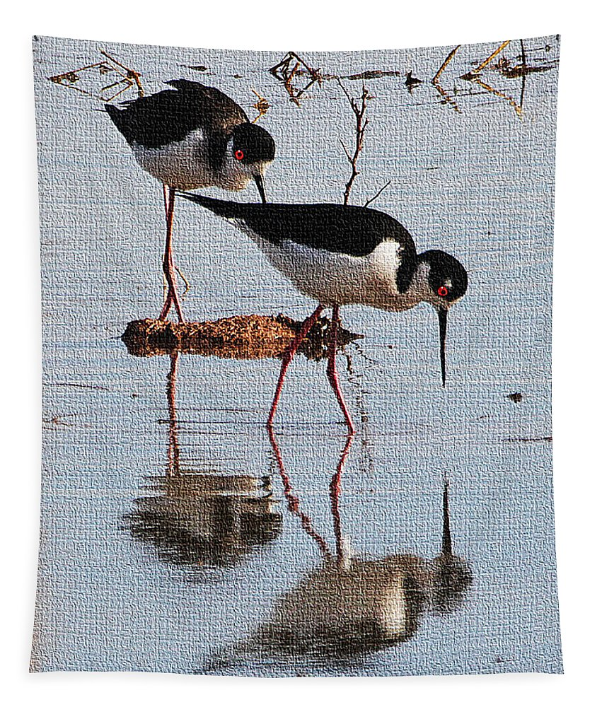Two Stilts Walk The Pond Tapestry featuring the photograph Two Stilts Walk The Pond by Tom Janca