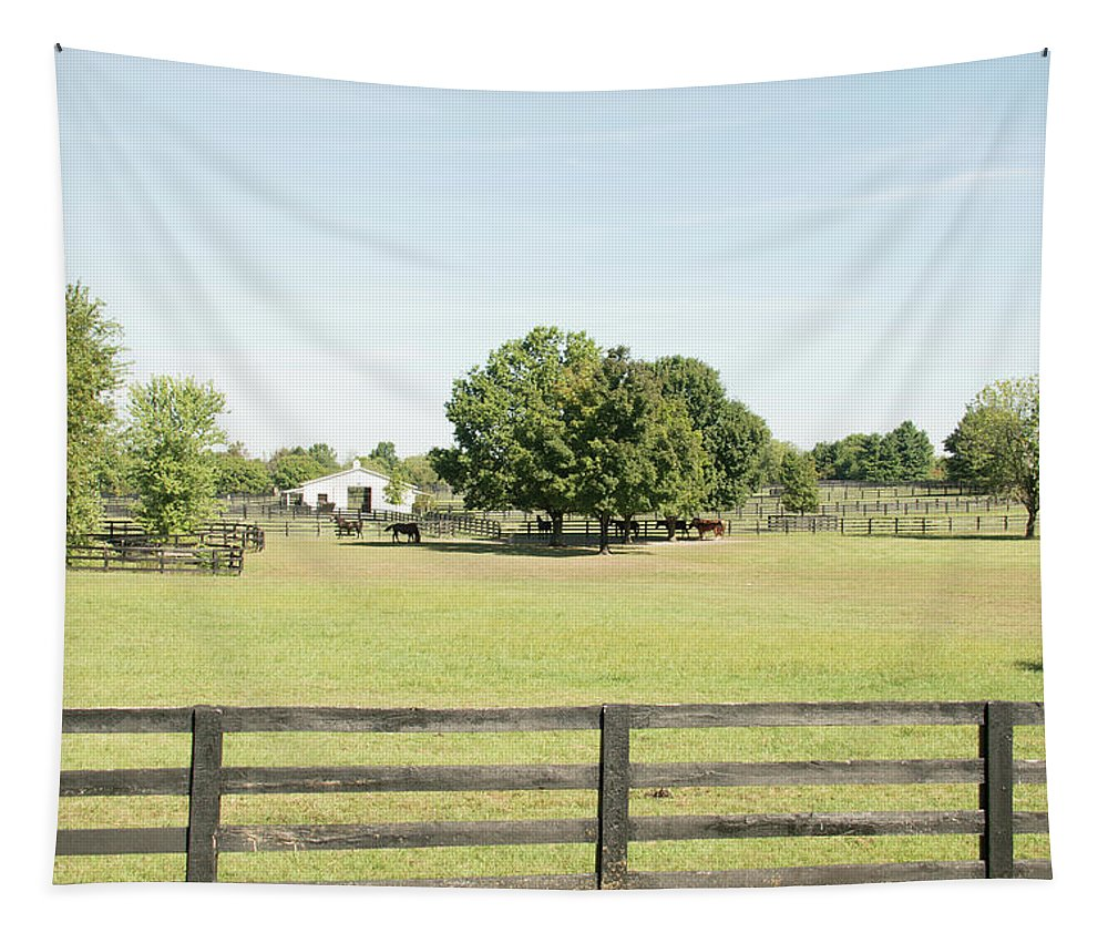 Horse Tapestry featuring the photograph Unbridled Farm by Pamela Williams