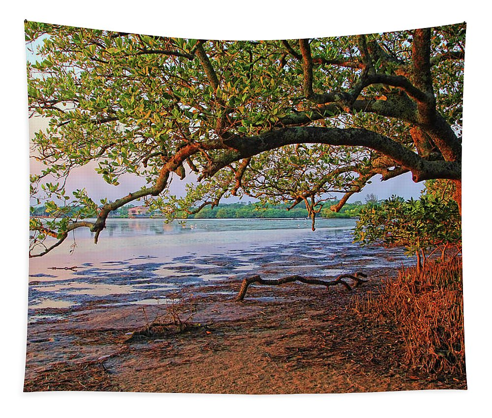 Hh Photography Of Florida Tapestry featuring the photograph Under The Mangroves by HH Photography of Florida