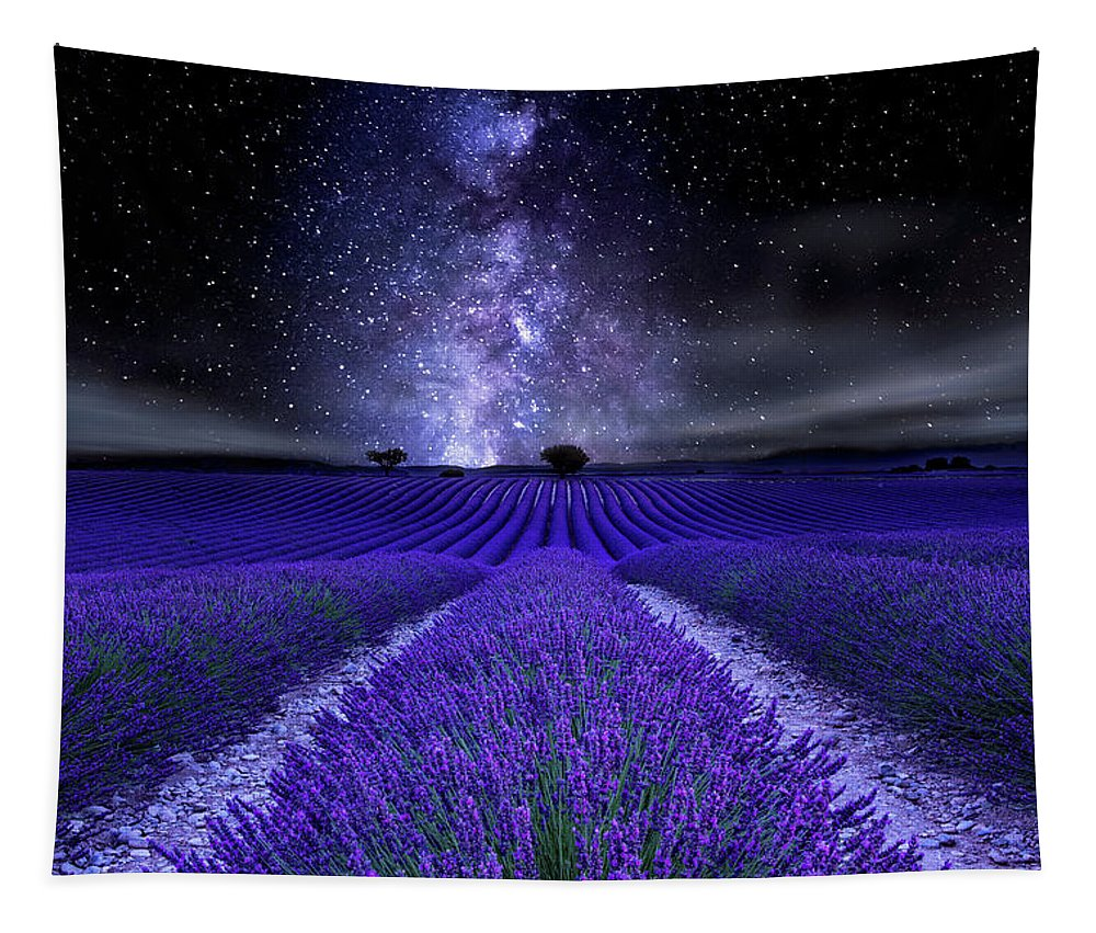 Night Tapestry featuring the photograph Under the Stars by Jorge Maia