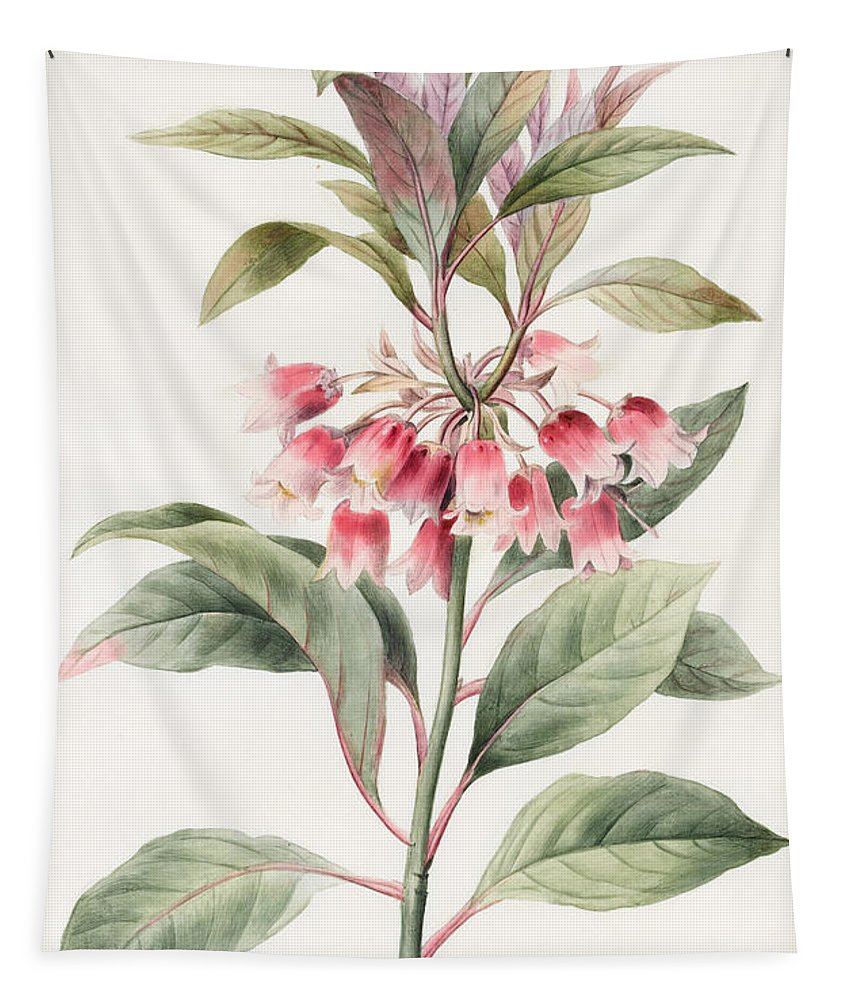 Floral Tapestry featuring the painting Unnamed by Louise D'Orleans