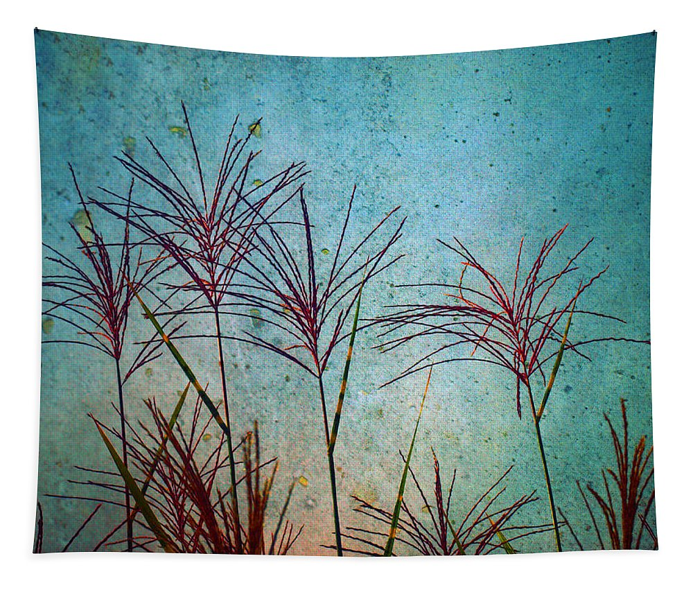 Zen Tapestry featuring the photograph Untitled by Tara Turner