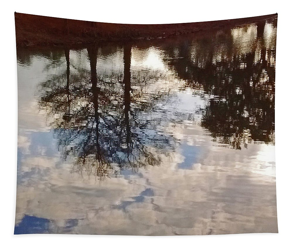 Photography Tapestry featuring the photograph Upside Down - Reflections by Marian Bell