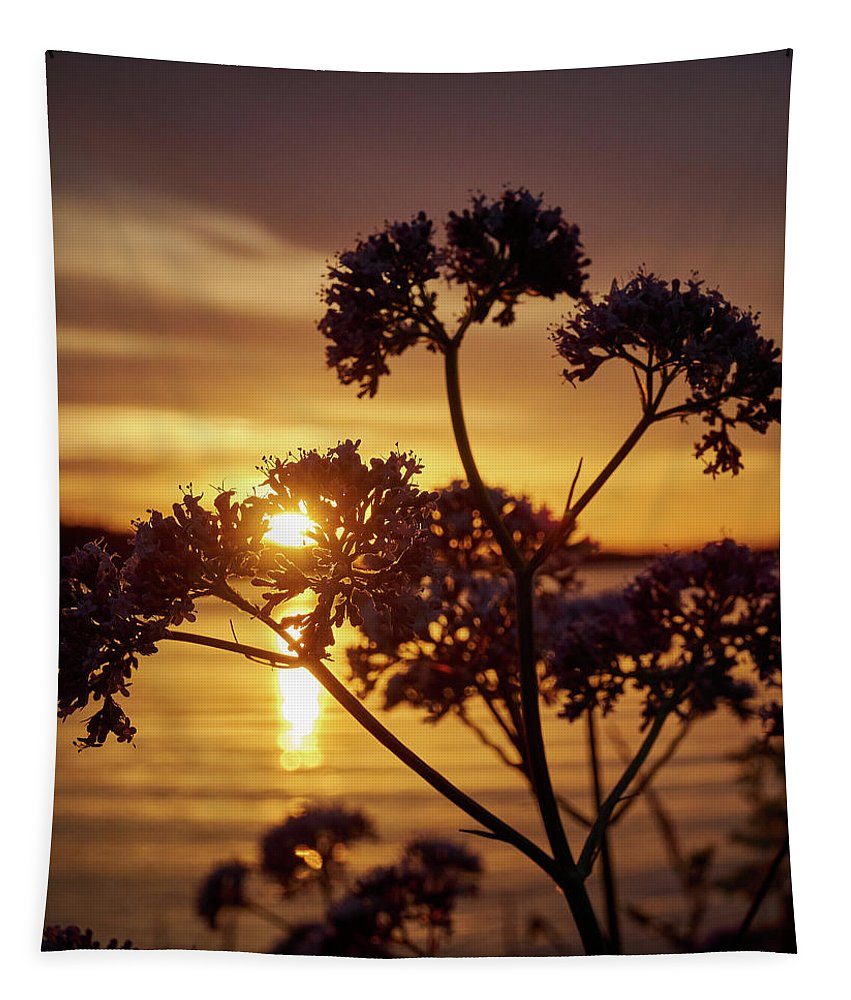 Finland Tapestry featuring the photograph Valerian Sunset by Jouko Lehto