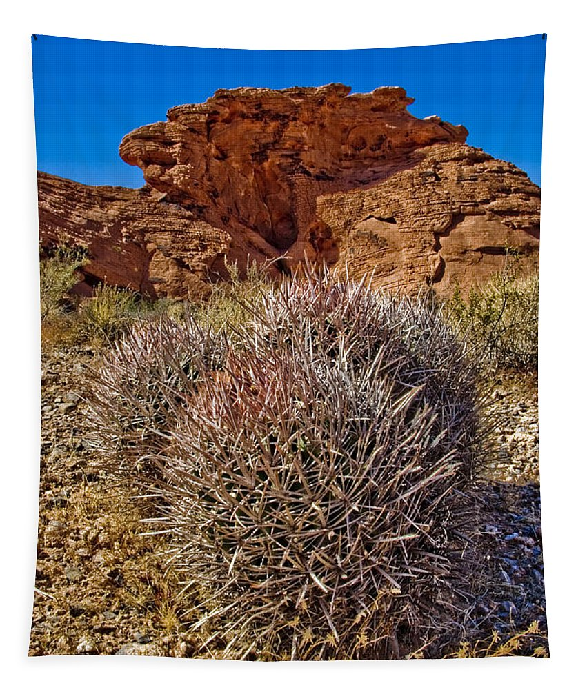 Barrel Cactus Tapestry featuring the photograph Valley Of Fire Barrels by Chris Brannen