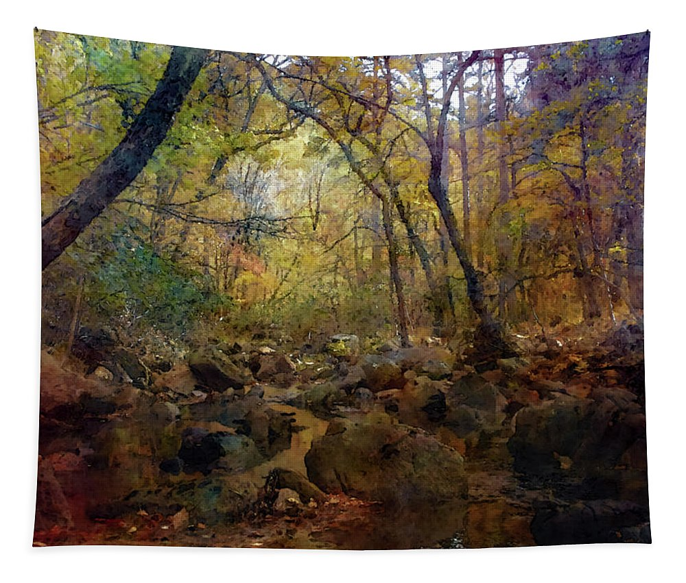 Impressionist Tapestry featuring the photograph Valley Stream 6256 Idp_2 by Steven Ward
