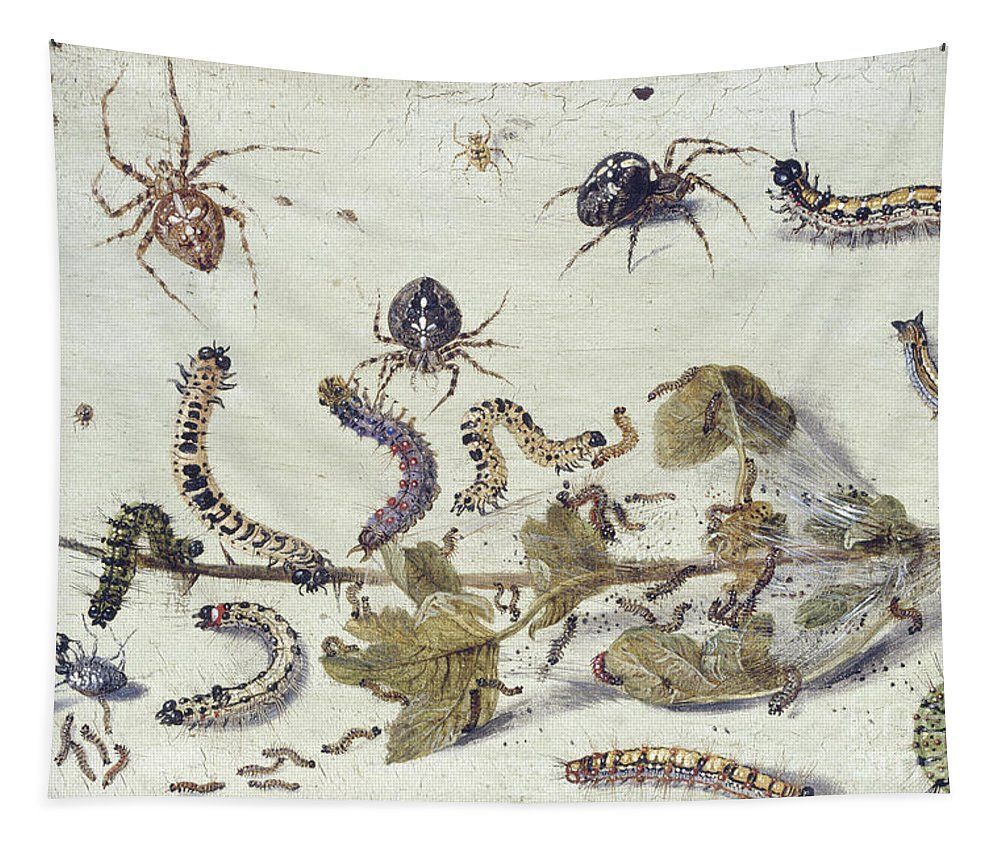 Spider Tapestry featuring the painting Various Spiders And Caterpillars, With A Sprig Of Gooseberry by Jan Van Kessel