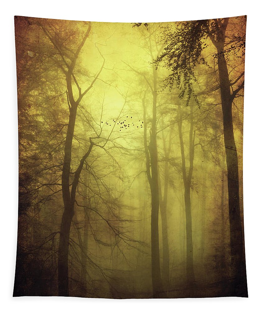 Forest Tapestry featuring the photograph Veiled Trees by Dirk Wuestenhagen
