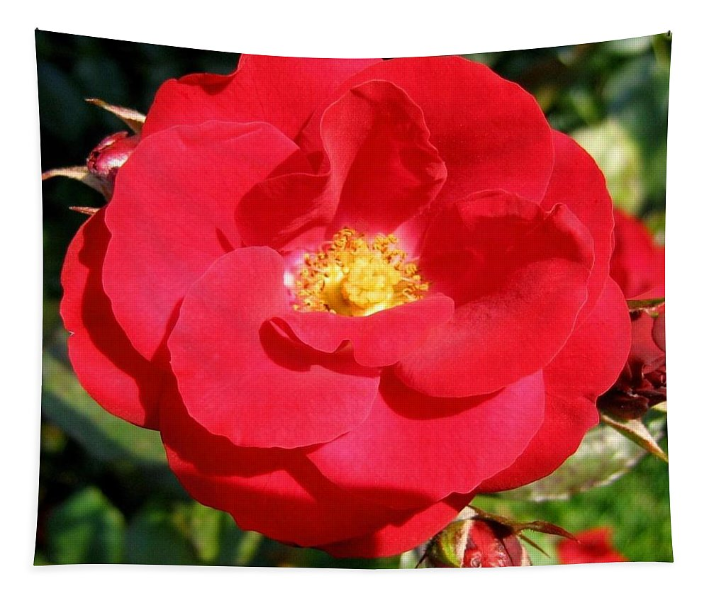 Rose Tapestry featuring the photograph Vibrant Red Rose by Will Borden
