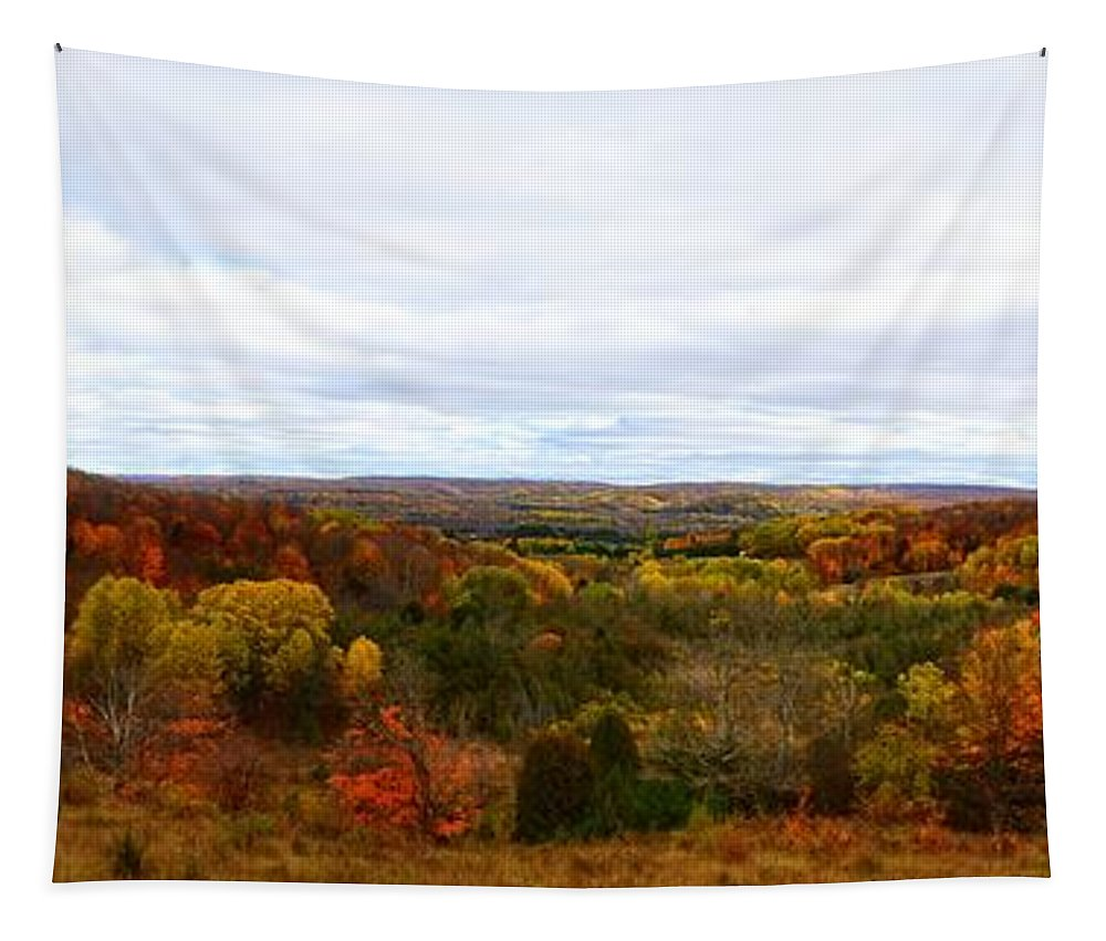 Green Tapestry featuring the photograph View From Kidder Road by Michelle Calkins
