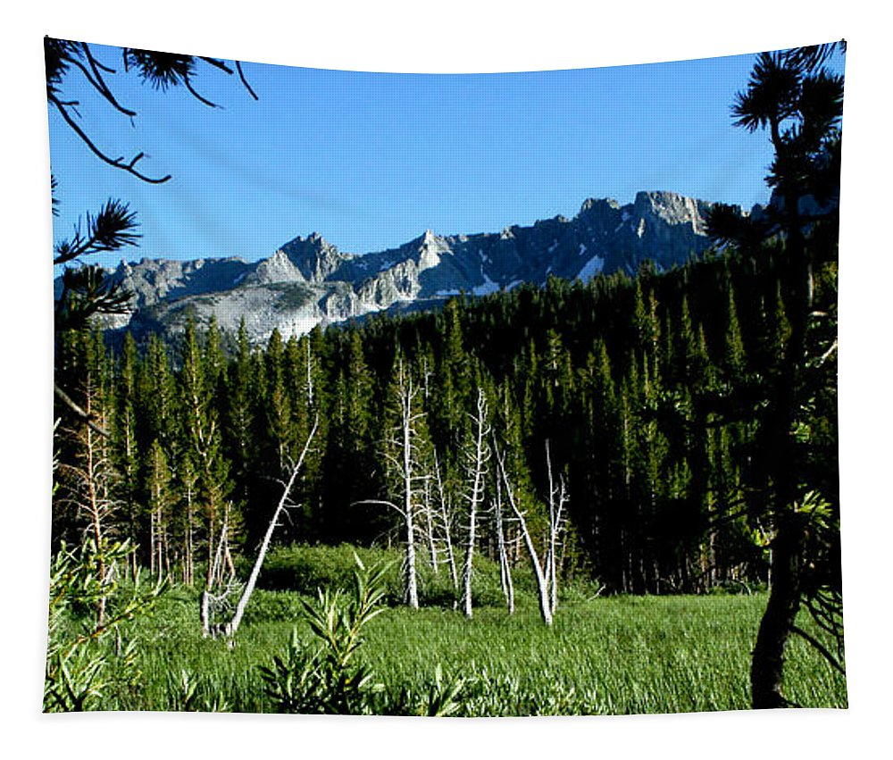View From Lake Mary Tapestry featuring the photograph View From Lake Mary by Chris Brannen