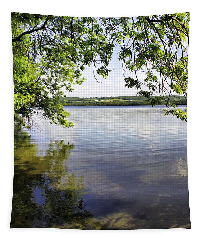 Vermont Tapestry featuring the photograph View From Under At Lake Carmi by Deborah Benoit