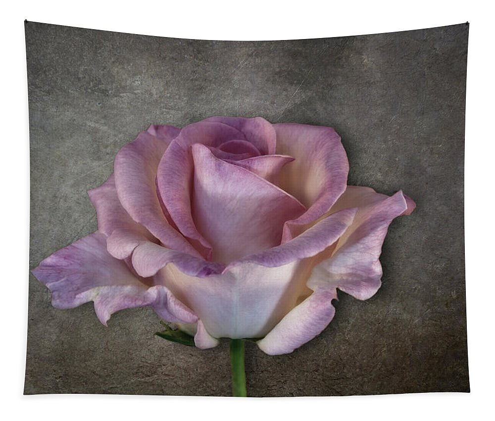 Photography Tapestry featuring the digital art Vintage Rose On Gray by Terry Davis