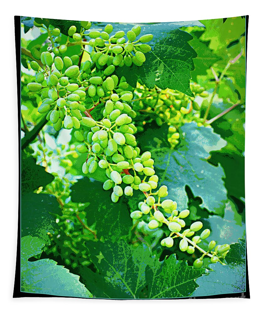 Vineyard Tapestry featuring the photograph Vintage Vines by Carol Groenen
