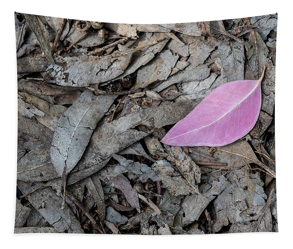 Flora Tapestry featuring the photograph Violet Leaf On The Ground by Michalakis Ppalis