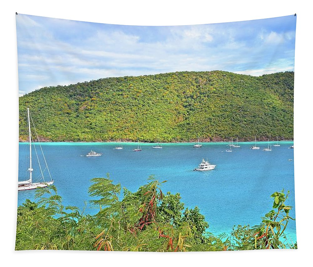 Caribbean Tapestry featuring the photograph Virgin Island Getaway by Frozen in Time Fine Art Photography