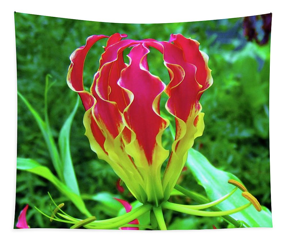Flower Tapestry featuring the photograph Vivid Gloriosa Lily by Cynthia Guinn