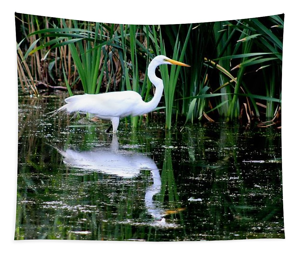 Karen Silvestri Tapestry featuring the photograph Wading For Food by Karen Silvestri