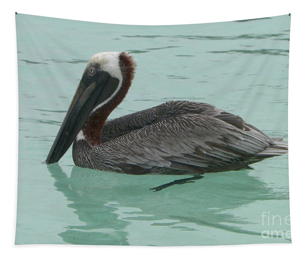 Pelican Tapestry featuring the photograph Waiting For Lunch by Gina Sullivan