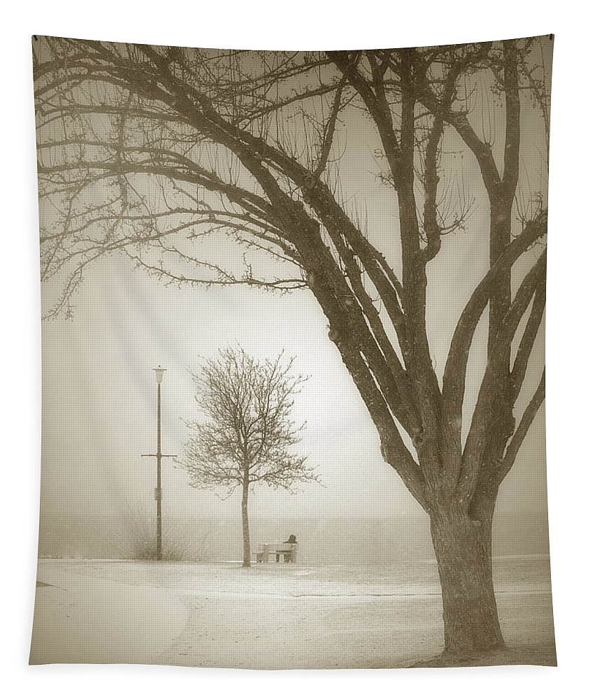 Storm Tapestry featuring the photograph Waiting Out The Storm by Tara Turner