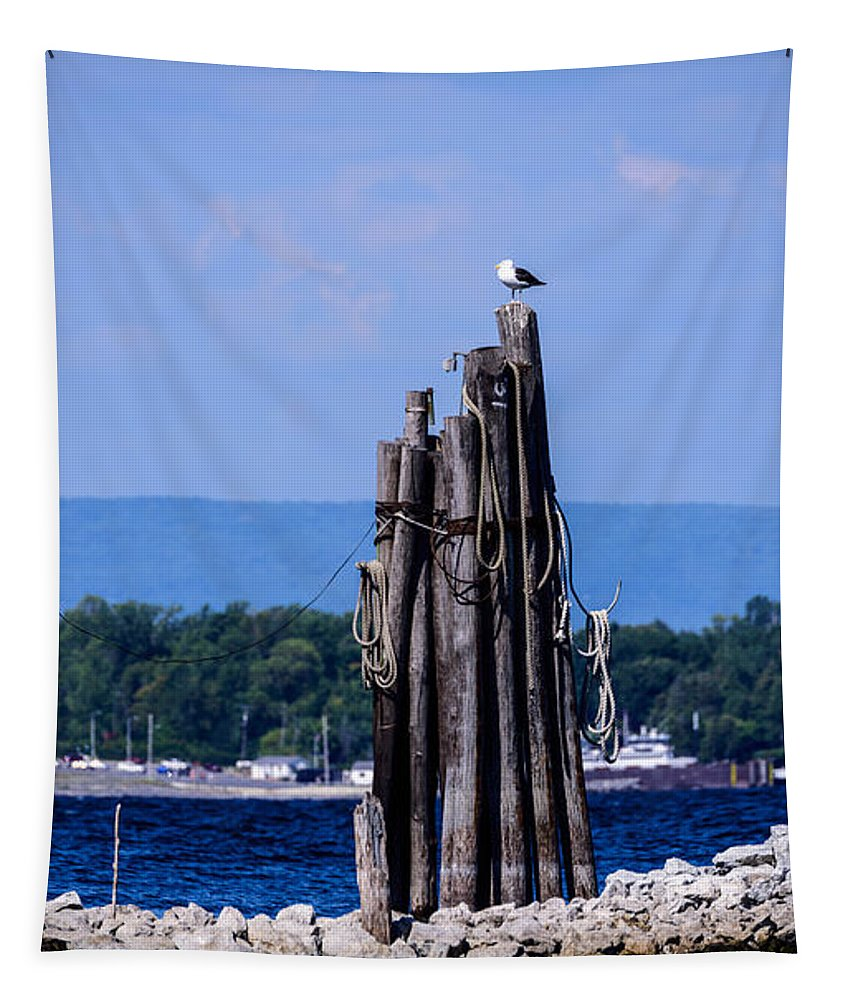 Bird Tapestry featuring the photograph Waiting by Sherman Perry