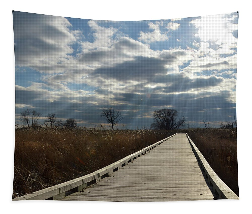 Walkway Tapestry featuring the photograph Walk Thru The Marsh by Barbara Treaster