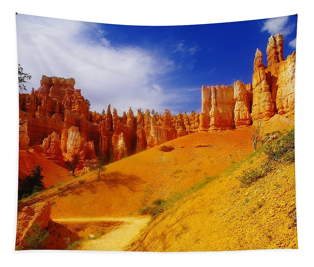 Bryce Canyon Tapestry featuring the photograph Walking Bryce by Jeff Swan