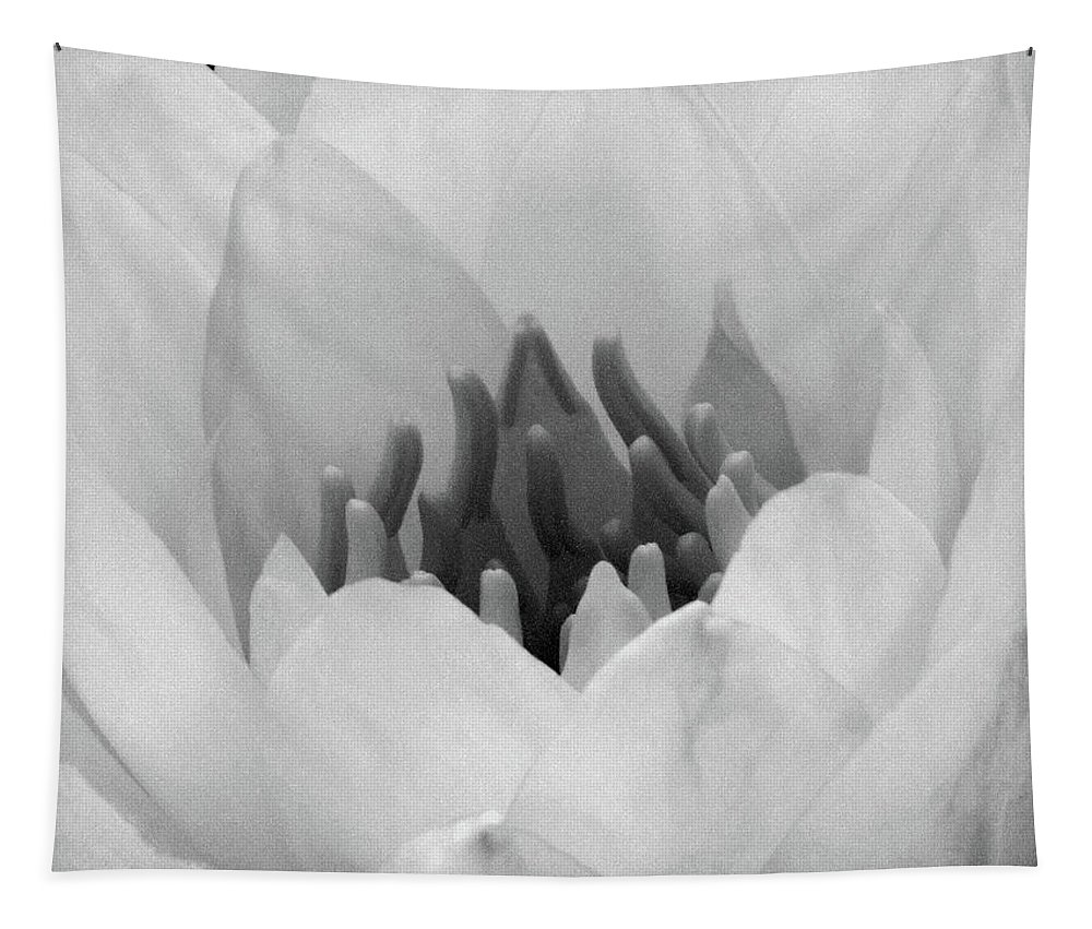 Water Lily Tapestry featuring the photograph Water Lily - Burnin' Love 05 - Bw - Water Paper by Pamela Critchlow