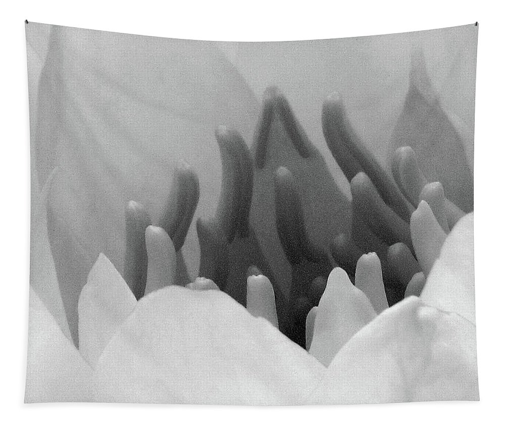 Water Lily Tapestry featuring the photograph Water Lily - Burnin' Love 11 - Bw - Water Paper by Pamela Critchlow