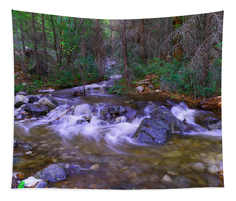 Rivers Tapestry featuring the photograph Water Never Tires by Jeff Swan