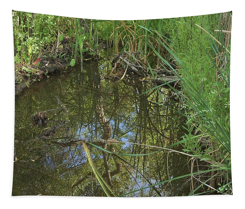 Linda Brody Tapestry featuring the photograph Water Pond Reflection In Peters Canyon by Linda Brody