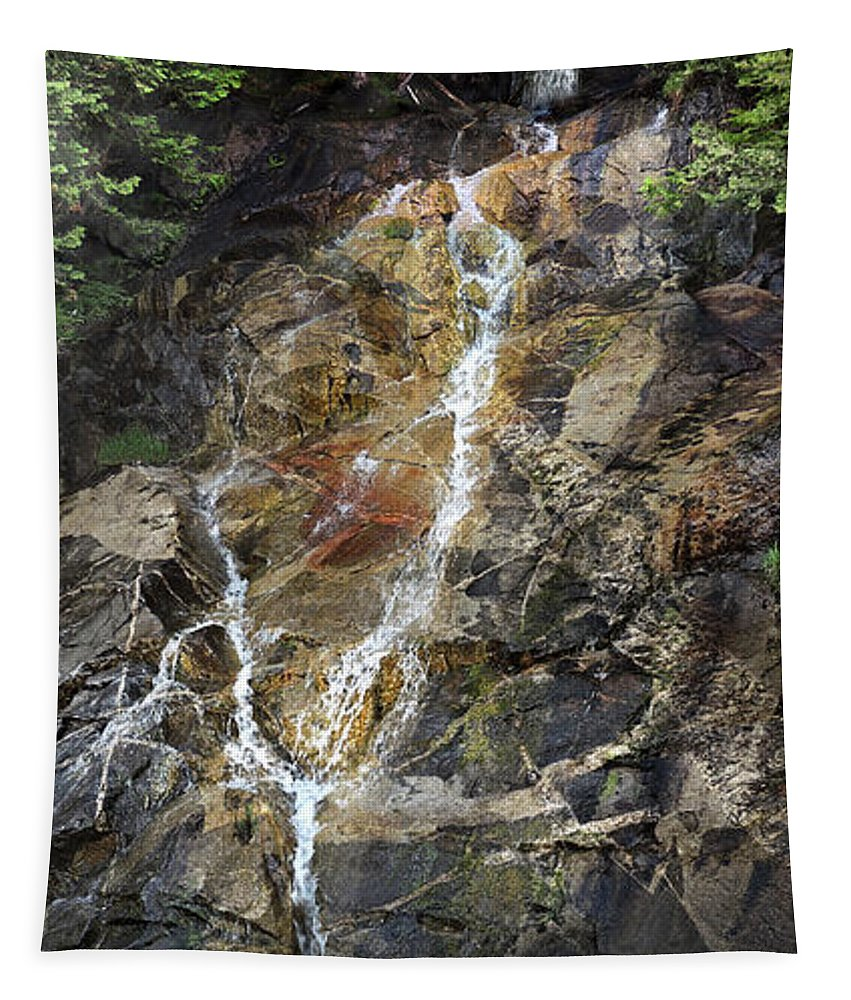 Waterfall Tapestry featuring the photograph Waterfall At Lake Willoughby by Nancy Griswold