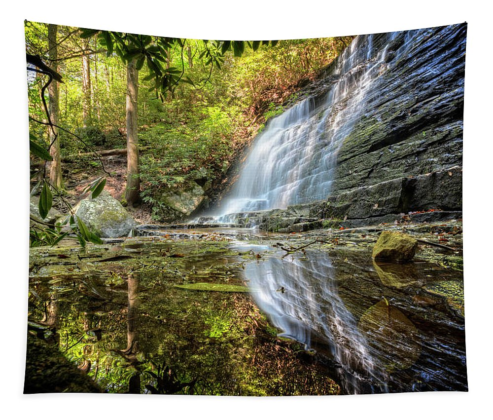 Appalachia Tapestry featuring the photograph Waterfall Reflections by Debra and Dave Vanderlaan