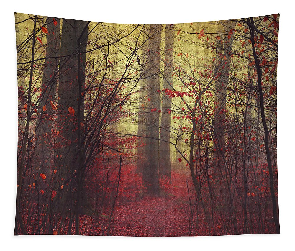 Atmosph�re Tapestry featuring the photograph Way In by Dirk Wuestenhagen