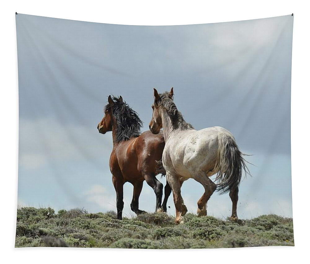 Wild Horses Tapestry featuring the photograph We Will Be Over the Hill in a Few Seconds by Frank Madia