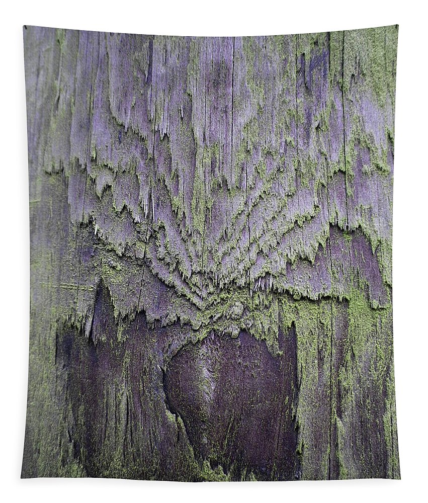 Wood Tapestry featuring the photograph Weathered Wood And Lichen Abstract by Richard Brookes