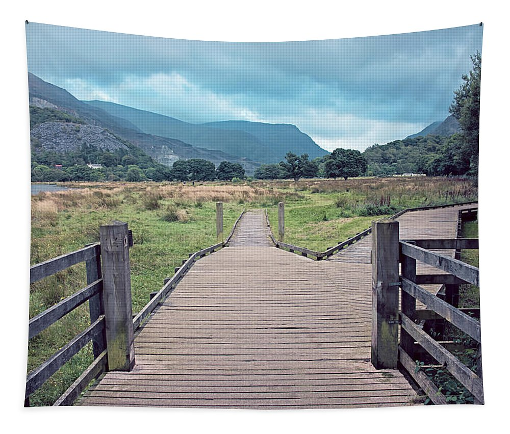 Beauty Tapestry featuring the photograph Welsh Landscape by Monika Tymanowska