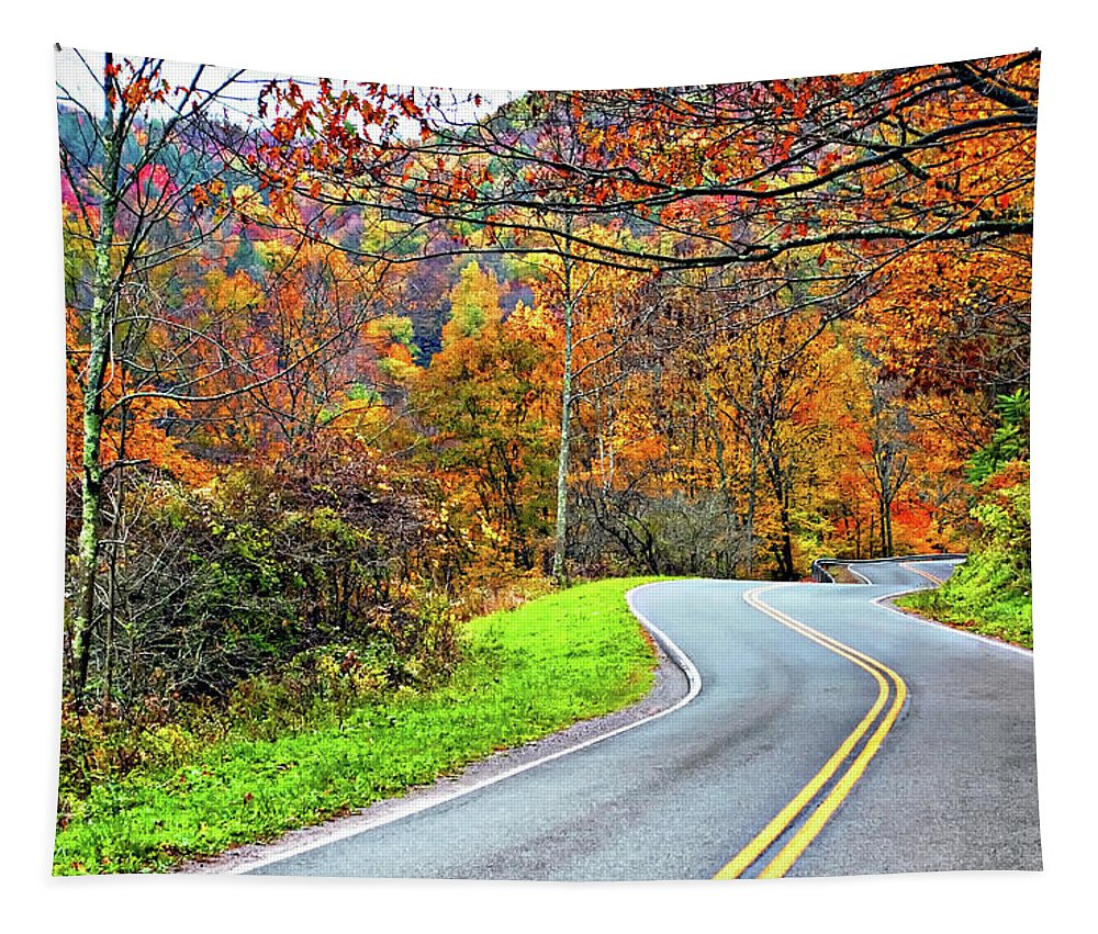 West Virginia Tapestry featuring the photograph West Virginia Curves by Steve Harrington