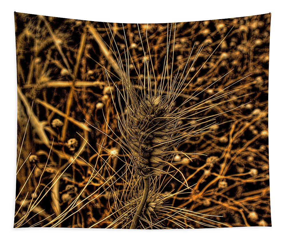 Wheat Tapestry featuring the photograph Wheat by David Patterson