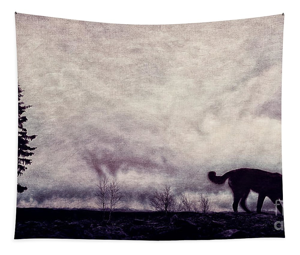 Night Tapestry featuring the photograph When Night Closes In by Priska Wettstein