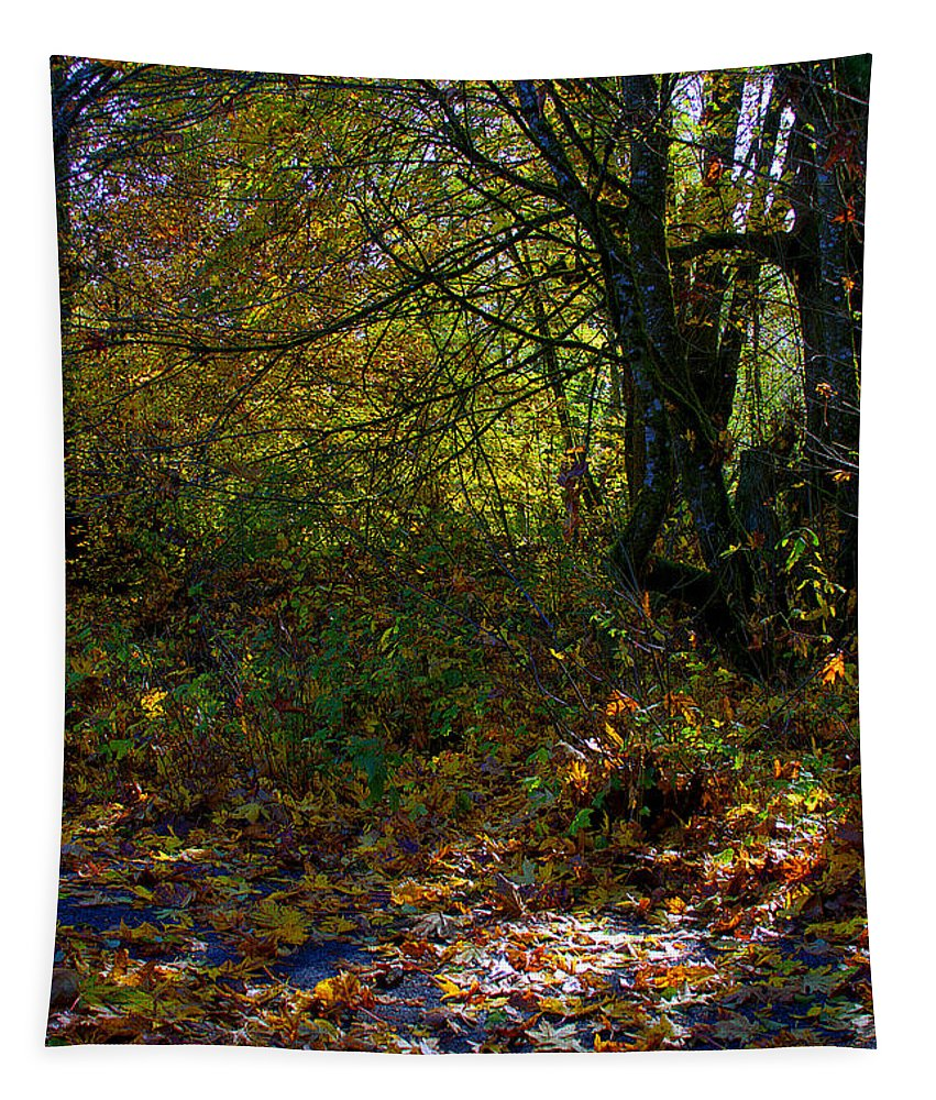 Hdr Tapestry featuring the photograph Where's The Trail by David Patterson