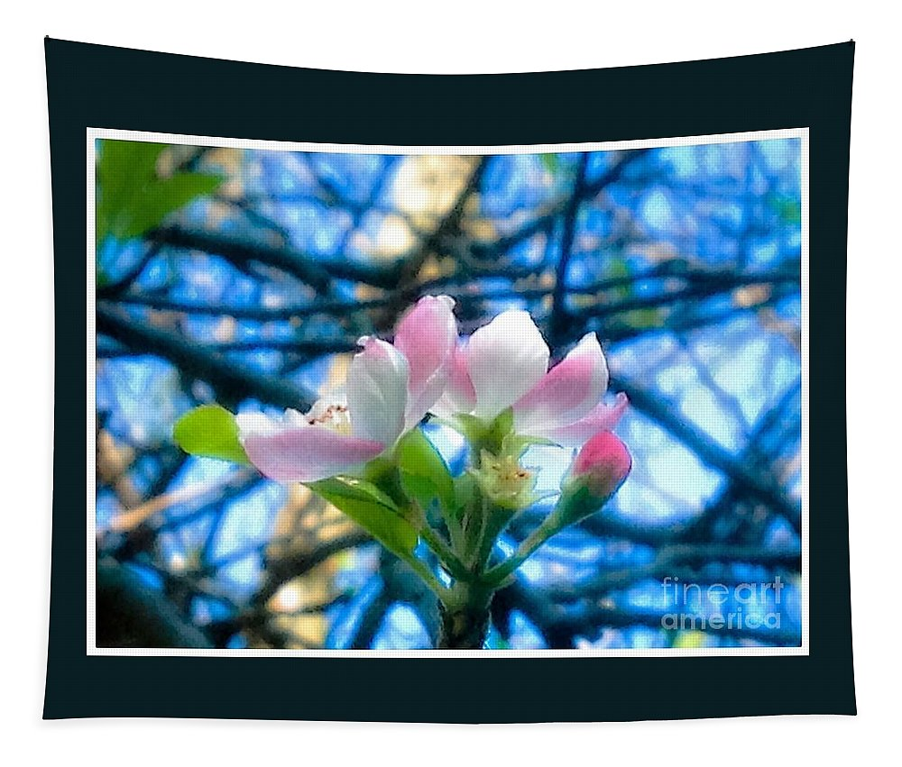 White Tapestry featuring the photograph White And Pink Apple Blossoms Against A Blue Sky by Debra Lynch